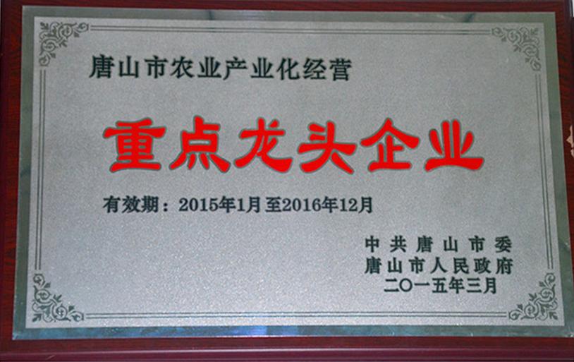 唐山花卉市场